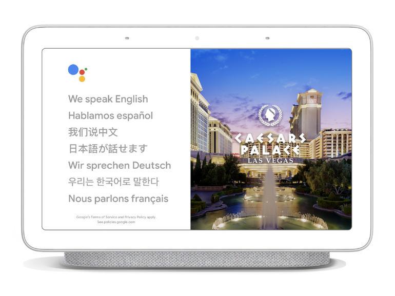 google-assistant-translate.jpg